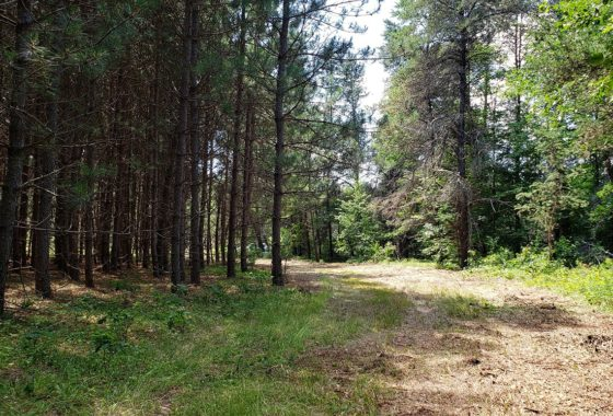 Crivitz WI Area Acreage near Left Foot Lake!