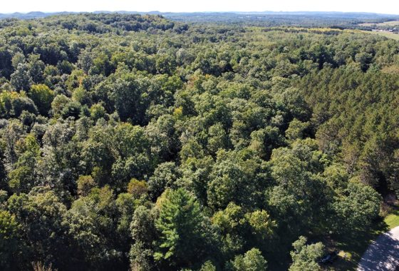 Central Wisconsin Monroe County 17 Acres for Sale!