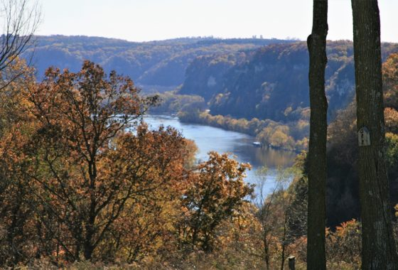 Mississippi Riverview Property for sale in NE IA!