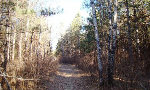 Adams County, WI - 3.45 Acres of Wooded Property & Lake Camelot!
