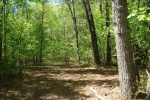 Northern Wisconsin, 15 Acres, Crivitz Area Adjoins Forestland!