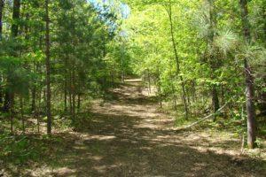 Northern Wisconsin, 15 Acres, Crivitz Area Adjoins Forestland!
