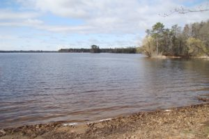 6 Acre Wooded Camp or Cabin Site, All Sports Northern Wisconsin Lake!