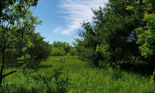 Central Wisconsin Property for Sale!