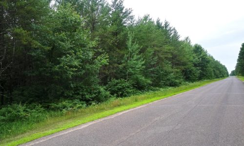 Northern WI Wooded Land near 1,400 Acre All Sports Lake!