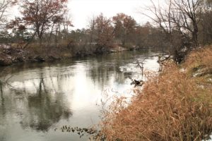 7 Acres of SW WI Land & 750' of Shoreline on the La Crosse River!