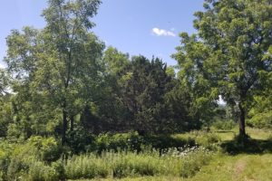 5 Acre Mississippi Riverview Property in Southwest Wisconsin!