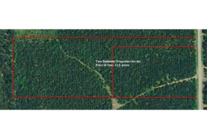 13.5 Acres in Central WI! Save $8k!