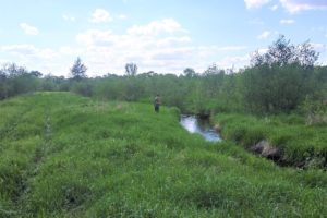 Central Wisconsin 255 Acre Recreational Retreat!
