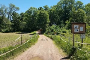 Wisconsin Wooded Acreage for Sale by Lake Petenwell!