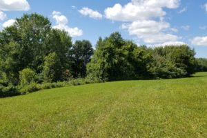 SW Wisconsin Camp or Cabin Property For Sale!