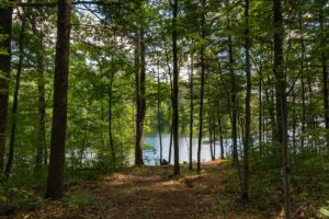 Northwoods WI Lakefront Land for Sale, 3 Acres, 160' Shore!