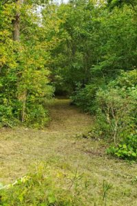 40 Acre Wisconsin Wooded Hunting Land For Sale!
