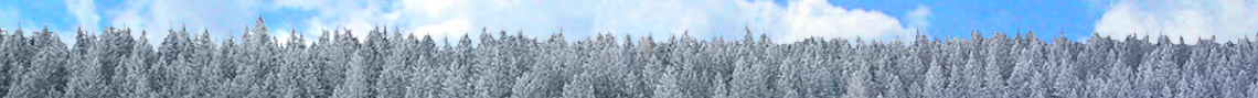 Winter Land Sale!