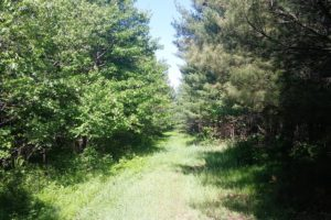 Wisconsin Dells Area Lakefront Property!