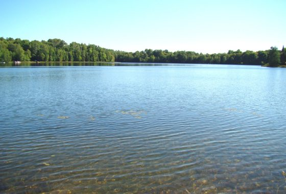 Northern WI Lakefront Property for Sale!