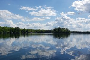 Northern WI, 6.6 Acres, Woods, Wildlife, Lucerne and Metonga Lakes!