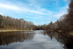 Wooded Wisconsin Hunting Land Surrounded by Lakes in Oneida County!