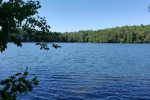 Northern WI Rhinelander Lakefront Property!